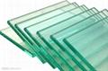 廠家供應生產 各種鋼化玻璃 5mm-15mm 歡迎來電 1