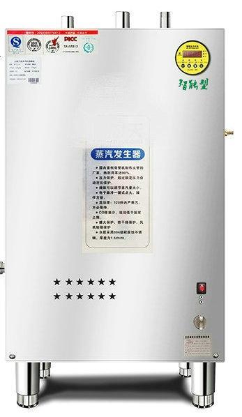 燃气蒸汽发生器用于豆腐或豆制品加工 1
