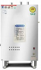 燃气蒸汽发生器用于豆腐或豆制品加工