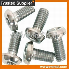 Grade 7 Titanium Screw