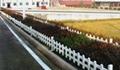 pvc草坪塑钢护栏 3