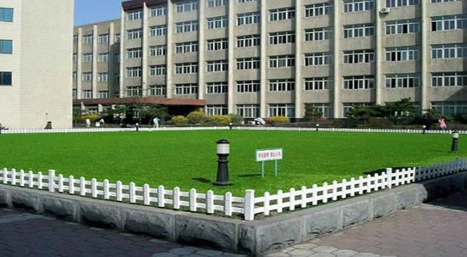 市政街邊花壇草坪藝朮護欄 1