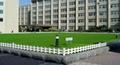 市政街邊花壇草坪藝朮護欄