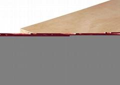 18mm falcata core wood blockboard