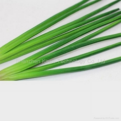 High quality PU plastic vegetable artificial chive model