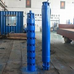 10-600方流量井用高扬程潜水泵