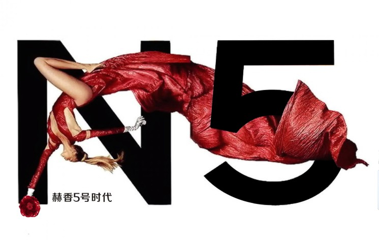 赫香5号 1