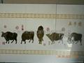 艺术陶瓷背景墙 4
