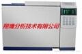 GC7990气相色谱仪 2