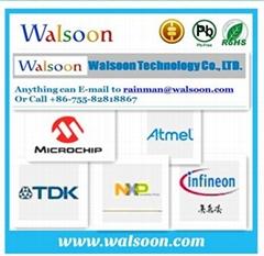 Walsoon Group Ltd.