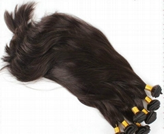 Silky Straight Brazilian Virgin Remy Human Hair Extension