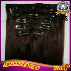 100% Human Hair Clip In Human Hair Extension