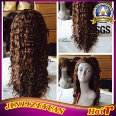 Virgin Human Hair Wig