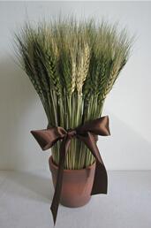 Wheat Bonsai home decoration 1