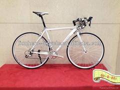 Road bicycle & road bike & Fixed gear bike 700C