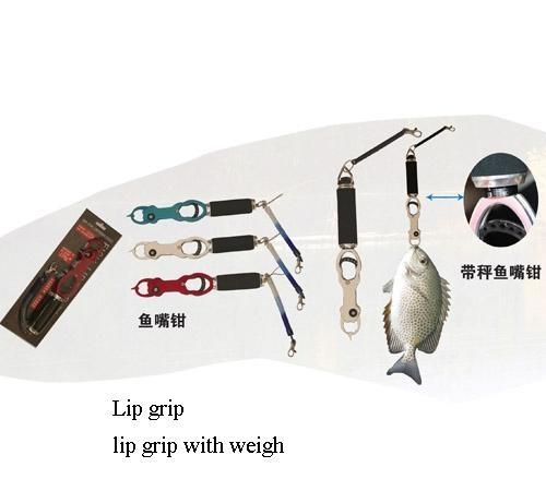 lip grip 1