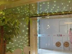 LED光源玻璃 LED发光玻璃幕墙