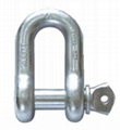 Stainless steel straight D shackle