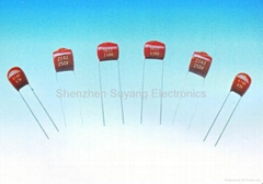 CL21X Mini metallized polyester film capacitor (MME Ser.)