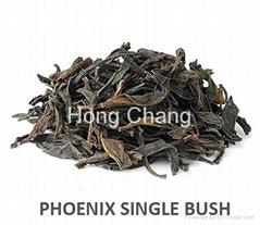 Phoenix single bush