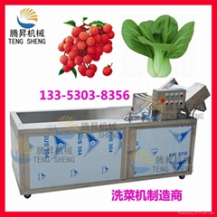 Multifunctional vegetable washing machine