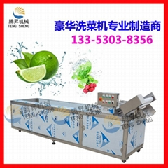 Factory direct rolling of vegetable