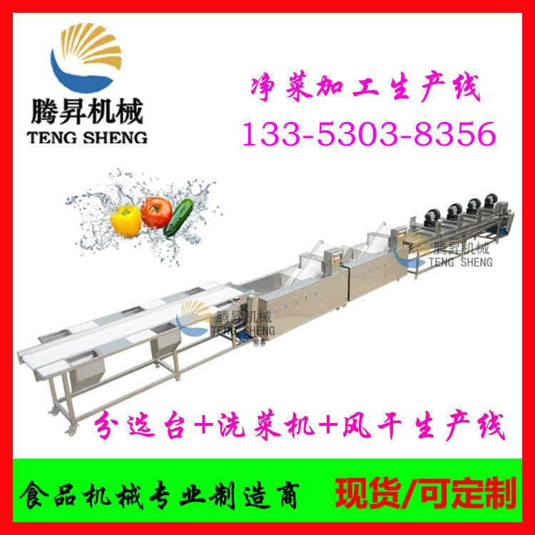 Fruit and vegetable processing equipment, fruit and vegetable sorting cleaning a 1