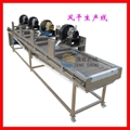 Fruit and vegetable processing equipment, fruit and vegetable sorting cleaning a 3