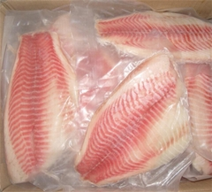 frozen tilapia fillets chinese factory