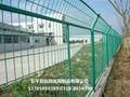高速公路護欄網 4