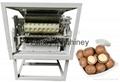 Macadamia Nut Shell Cutting Machine