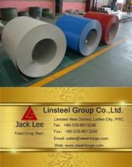 Hot dip galvanized prepainted steel coils