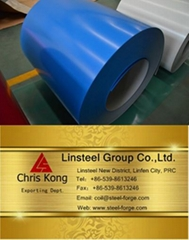PPGI/ PPGL Steel Coil