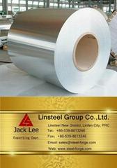 Hot galvanized steel coil