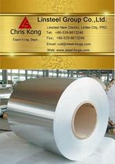 Hot dip galvanized prepainted steel coil GI GL steel coil