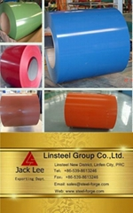 Prepainted Galvanized Steel Coil & Galvanized Coil