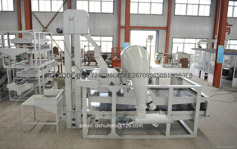 Advanced pumpkin seed processing machine 1