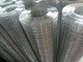 金龙1寸冷镀锌电焊网 3