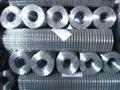 金龙2寸冷镀锌电焊网
