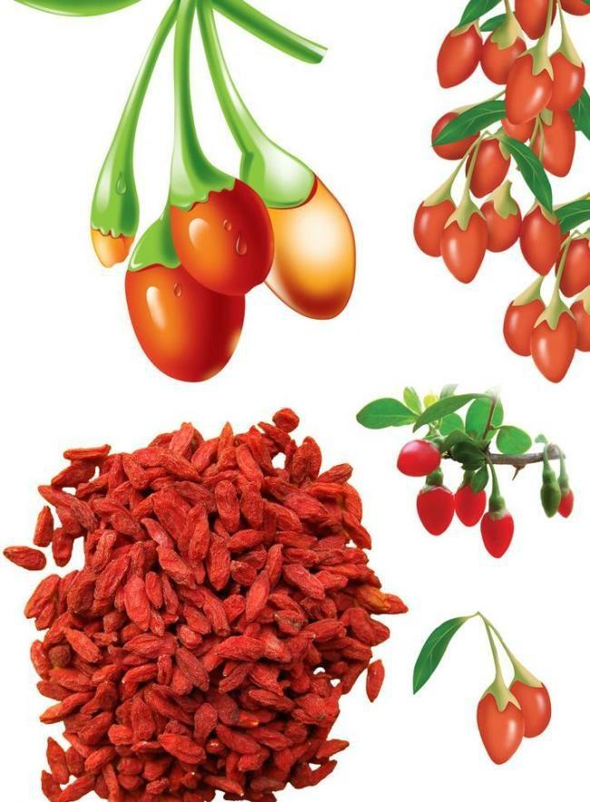 Dried Goji Berry Supply from Ningxia Zhengyuan 1