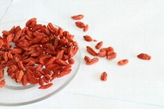 Dried Goji Berry Supply from Ningxia Zhengyuan 550pcs/50g