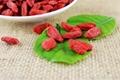 Dried Goji Berry Supply from Ningxia Zhengyuan 550pcs/50g 2