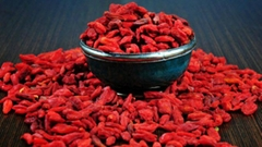 Goji Berry Superfruit from Ningxia China