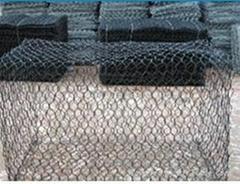 石笼网8*10网孔