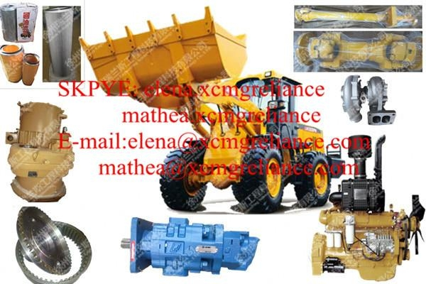 Sell Oman XCMG LW300F Fuel filter A3000-110520 1