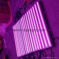 Waterproof 24/36x9w RGB IP65 LED wall wahser