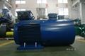Y2VP Series Inverter Motors