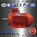 YE2 Series High Efficiency Motors