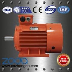 Y2DT Series pole-changing multi-speed motors