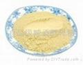 食品級啤酒酵母粉 2